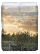 Waterbuck Kobus Ellipsiprymnus Mother Duvet Cover