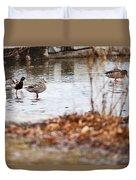 Waterfowl Calisthenics Duvet Cover