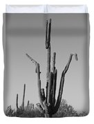 Weird Giant Saguaro Cactus In Black And White Duvet Cover