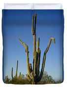 Weird Giant Saguaro Cactus With Blue Sky Duvet Cover