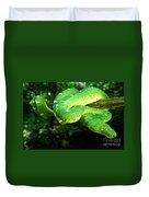 West Amazonian Emerald Tree Boa Duvet Cover