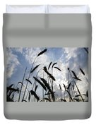 Wheat With Blue Sky Duvet Cover