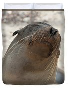 Whiskers On The Face Of A Fur Seal Duvet Cover