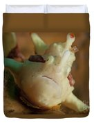 White And Red Clown Frogfish, Bali Duvet Cover by Mathieu Meur