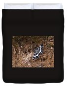 White-banded Black Moth Duvet Cover