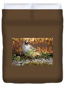 White Crowned Sparrow Duvet Cover