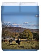White Faced Cattle In Autumn Duvet Cover