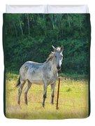 White Mule No.5007 Duvet Cover