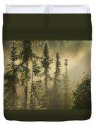 White Spruce In Mist At Sunrise Duvet Cover