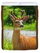 Wild Deer Duvet Cover