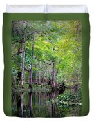Wild Florida - Hillsborough River Duvet Cover