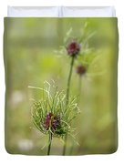 Wild Garlic - Allium Vineale Duvet Cover