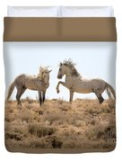 Wild Horse Disagreement  Duvet Cover