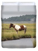 Wild Pony In The Marsh On Assateague Island Md Duvet Cover