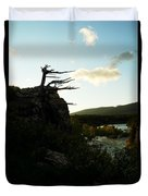 Wind Blown Tree At Many Glacier Duvet Cover