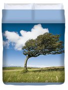 Wind-swept Solitary Tree On Open Grassy Duvet Cover