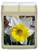 Winter Daffodil  Duvet Cover