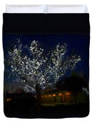 Winter Lights Duvet Cover