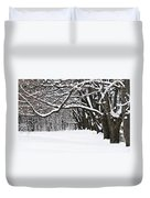 Winter Park With Snow Covered Trees Duvet Cover by Elena Elisseeva