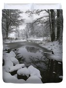 Winter Scene Of Creek With Snow-covered Duvet Cover