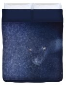 With Glowing Eyes, A Leopard Seal Peers Duvet Cover
