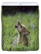 Wolf Puppy Howling In Mountain Meadow Duvet Cover