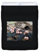 Wolf's Milk Slime Mold - Lycogala Epidendrum Duvet Cover