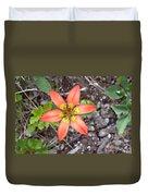 Wood Lily Lilium Philadelphicum Duvet Cover