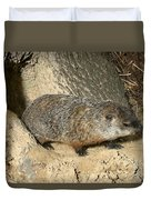 Woodchuck Duvet Cover