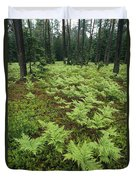 Woodland View In A Pine Forest Duvet Cover