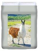 Wyoming Llama - El Tuffo Duvet Cover