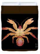 X-ray Of Coconut Crab Duvet Cover