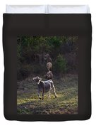 Yearling On The Run Duvet Cover