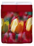 Yellow And Red Tulip Blooms Duvet Cover