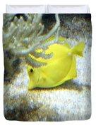 Yellow Angelfish Duvet Cover