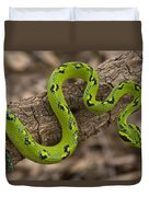 Yellow-blotched Palm Pitviper Duvet Cover