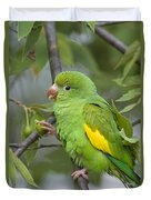 Yellow-chevroned Parakeet Brotogeris Duvet Cover