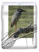 Yellow-crowned Night-heron Duvet Cover