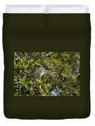Yellow-crowned Night Heron Duvet Cover