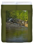 Yellow Dog Falls 4232 Duvet Cover by Michael Peychich