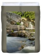 Yellow Dog Falls 4246 Duvet Cover by Michael Peychich