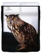 Yellow-eyed Owl Side Duvet Cover
