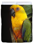 Yellow-faced Parrot Amazona Xanthops Duvet Cover