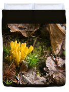 Yellow Fungus 1 Duvet Cover
