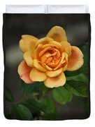 Yellow Rose Of Baden Duvet Cover