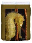 Yellow Seahorse, Batam, Riau, Indonesia Duvet Cover