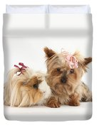 Yorkshire Terrier And Guinea Pig Duvet Cover