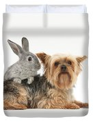 Yorkshire Terrier And Young Silver Duvet Cover