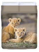Young African Lion Cubs  Duvet Cover