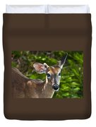Young Buck 2 Duvet Cover